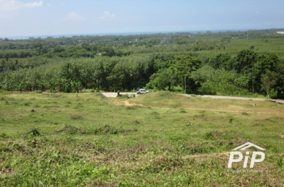 Ocean (Andaman Sea) View Land for Sale in Mai Khao